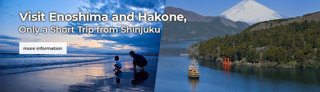Visit Enoshima and Hakone, Only a Short Trip from Shinjuku